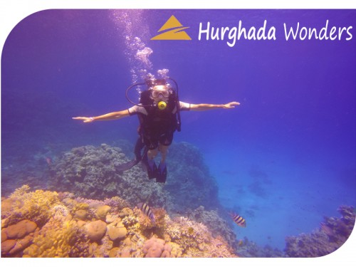 Intro Diving in Hurghada