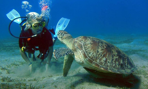 Marsa Alam Excursions | Tours from Marsa Alam | Marsa Alam Day Tours