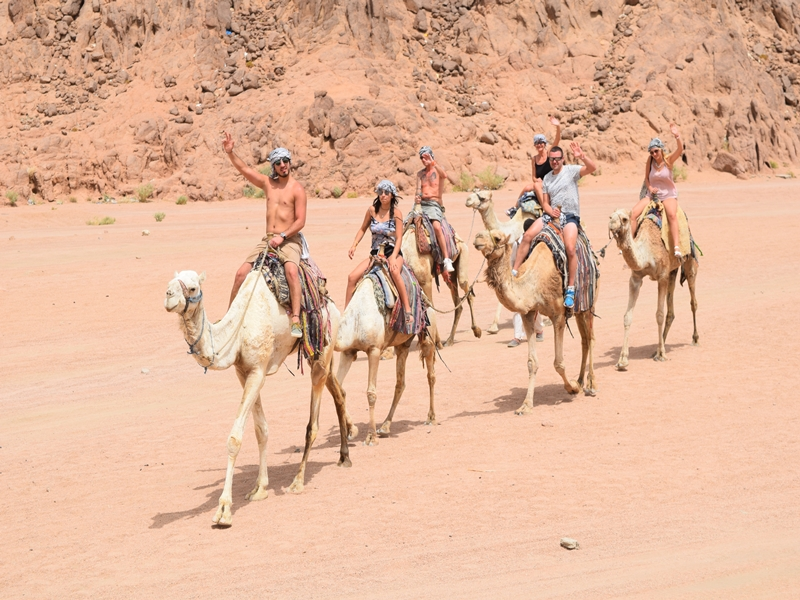 Tours, Excursions & Safari Trips in Hurghada desert
